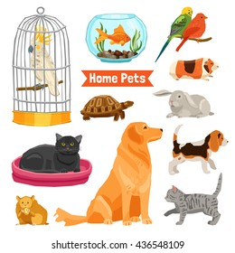 Big and small home pets set with dogs cats birds fish turtle hamster rabbit and guinea pig on white background flat isolated vector illustration