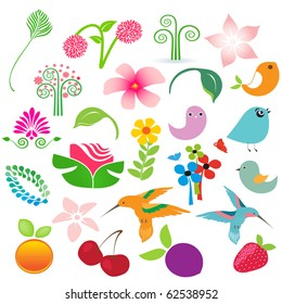 Big vector elements set. Birds, fruits and flowers for your design
