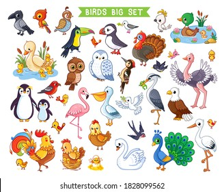 Big vector set with birds in cartoon style. Vector collection with birds in children's style on a white background.