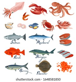 Big vector set with different varieties of marine fishes and seafood specialties, delicacies. Underwater inhabitants, animals. Lettering. Cartoon collection isolated on white background.