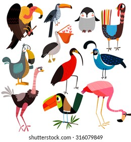 Big vector set  of different wild birds-vulture,penguin, pelican, turkey, toucan, flamingo, ostrich, ibis,dodo and other