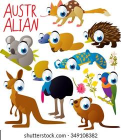 big vector set of funny comic cartoon animals: australian animal: quoll, platypus or duckbill, echidna or anteater, koala, lizard, cassowary, parrot, kangaroo, quokka