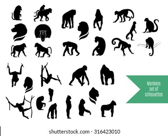 The big vector set of wild monkeys silhouettes. The big collection of wild animals.