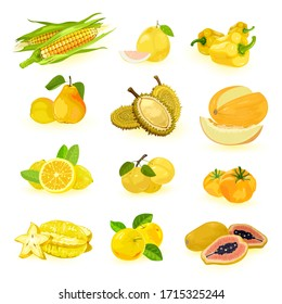 Big yellow fruits and vegetables vector set isolated on white maize, pomelo, bell pepper, pear, durian, melon, lemon, cherry plums, tomato, carambola, apple, papaya Summer harvest