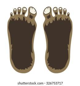 Bigfoot Feet