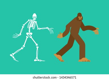 Bigfoot skeleton islated. sasquatch skull and bones. Abominable snowman. sasquatch Remains