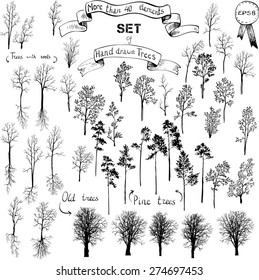 the biggest set of different drawing trees, winter,deciduous, conifers, old, pines, with roots, hand drawn vector illustration