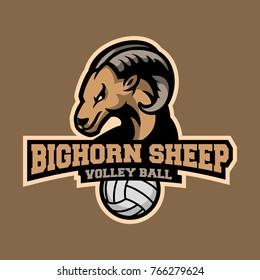 Bighorn Sheep sports logo, Bighorn Sheep mascot, Volleyball logo