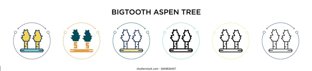 Bigtooth aspen tree icon in filled, thin line, outline and stroke style. Vector illustration of two colored and black bigtooth aspen tree vector icons designs can be used for mobile, ui, web