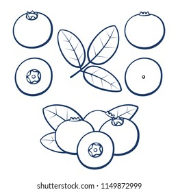 Bilberry. Outline berries of blueberries with leaves on a white background. Set of icons. Vector illustration.