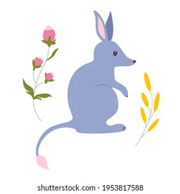 Bilby with flowers cartoon vector illustration. Australian cute marsupial animal. Easter aussie nature bunny bandicoot