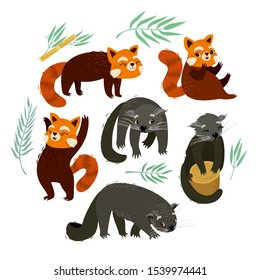 Binturong and the red panda. Cute animals at the zoo. Tropical plants