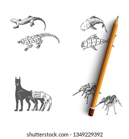 Bio robots - robot fish, dog, spider and gecko vector concept set. Hand drawn sketch isolated illustration