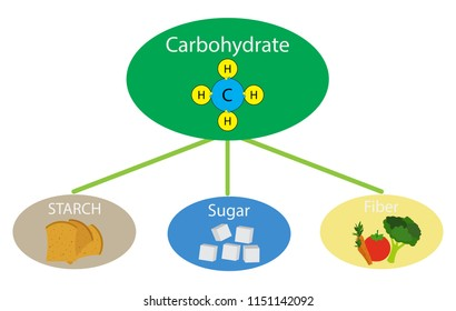 Biochemistry of food, illustration of Carbohydrate