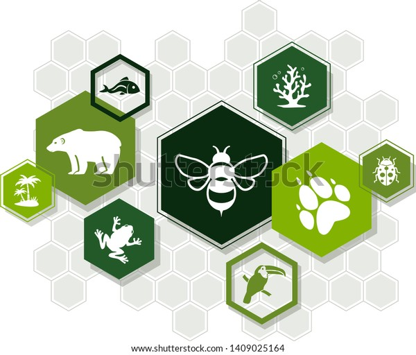 biodiversity icon concept – endangered species & biological diversity icons, vector illustration