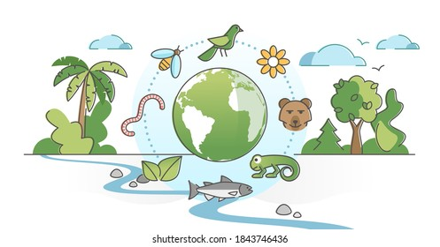Biodiversity as species variety and difference protection outline concept. Wild fauna as mammals, birds, insects and fish natural ecological habitat vector illustration. Animals extinction awareness.