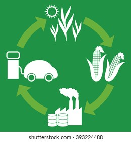 Biofuel: Biomass ethanol  life cycle, diagram illustration