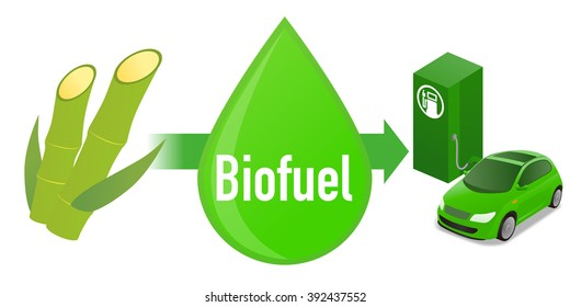 Biofuel: Biomass ethanol, made form Sugarcane, diagram illustration