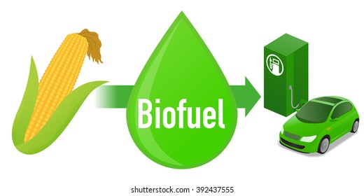 Biofuel: Biomass ethanol, made form corn, diagram illustration