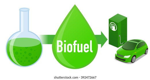 Biofuel: Biomass fuel from algae, diagram illustration