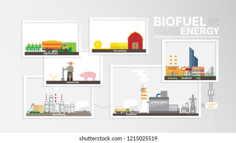 biofuel energy, how to produce biofuel, biofuel power plant generate the electricity