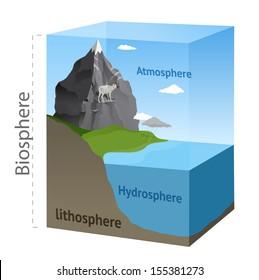 Biosphere illustration in vector