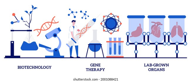 Biotechnology, gene therapy, lab-grown organs concept with tiny people. Bioengineering industry abstract vector illustration set. Stem cells, laboratory research, genetic cancer treatment metaphor.