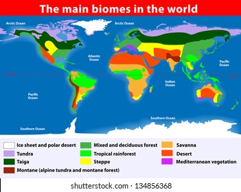 Biotope. Earth's Terrestrial Biomes. Vector map