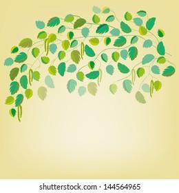 Birch Background.Vector Illustration