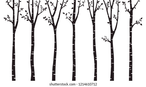 Birch tree silhouette