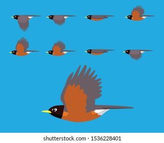Bird American Robin Flying Cartoon Vector Animation Frame