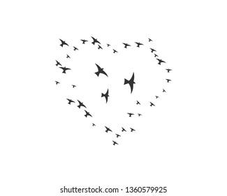 Bird background Template vector illustration - Vector
