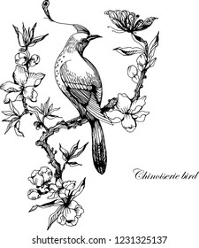 Bird in chinoiserie style. Ink illustration on white. Vector ink illustration. Bird and branch.