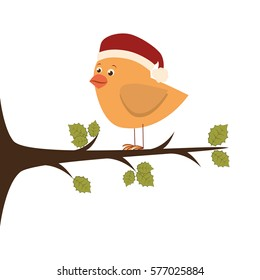 bird with christmas hat