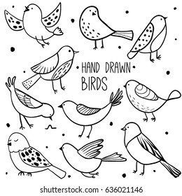 Bird collection. Collection of cute hand drawn bird doodles. Black on white vector set
