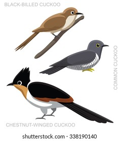 Bird Cuckoo Set Cartoon Vector Illustration