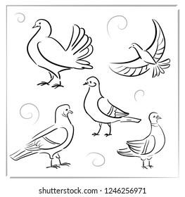 Bird Dove - doodle icons