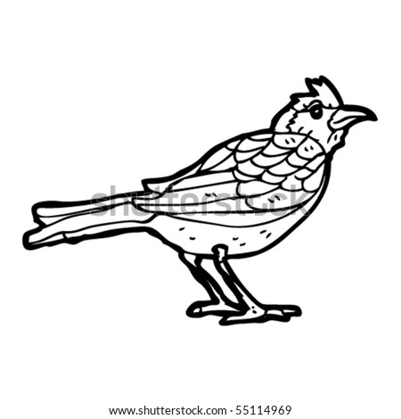 bird drawing stock vector royalty free 55114969 shutterstock