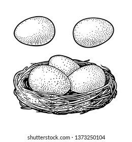Bird eggs in the nest. Vector black vintage engraving illustration. Isolated on white background. Hand drawn design element for poster Happy Easter