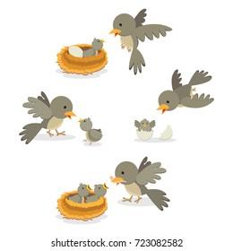 Bird family. Vector illustration.