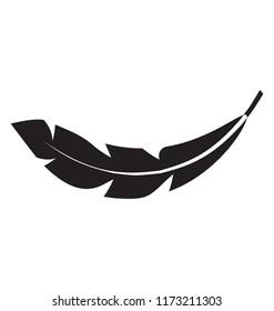 Bird feather glyph vector icon