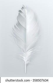 Bird feather, vector icon