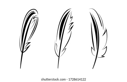 bird feathers graphic set black line minimalistic vector icon isolated on white background. To illustrate the processes of education, science, ease, write the text.