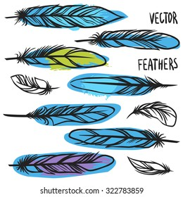 Bird feathers. Vector collection
