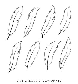 bird feathers. Vector. Set collection. Black and white on white background, Vector Illustration