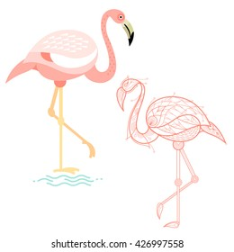 vector illustration flamingo template posters placard stock vector