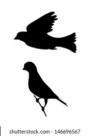 Bird flaying and bird on a branch - birds black silhouette