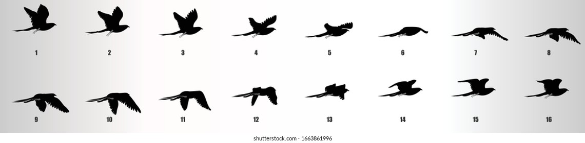 Bird flying animation sequence silhouette, loop animation sprite sheet
