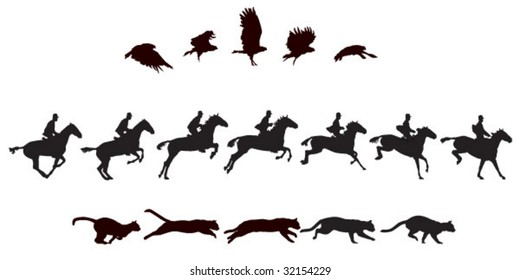 bird flying, cat, horse (w/removable rider) jumping. See #31645087 for more sequences
