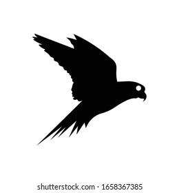 Bird with glyph icon vector